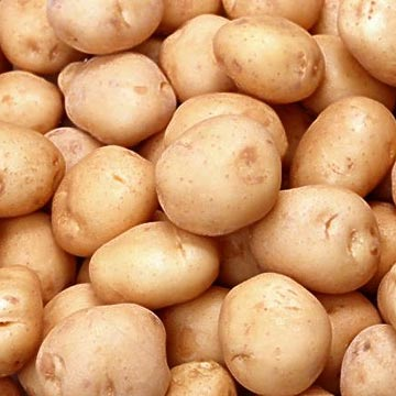 Potato Juice Could Help Cure Stomach Ulcers