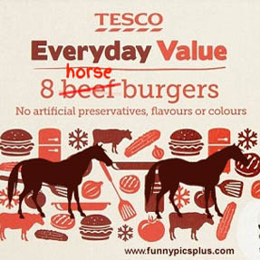 Tesco Horse Meat