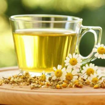 Nature Is At It Again: Camomile Tea 'Fights Cancer'