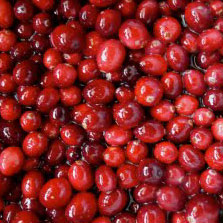 Cranberry Juice Really Does Prevent Bladder Infections
