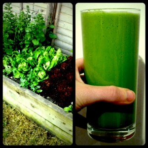 Juicing: Green Juice from Garden to Glass