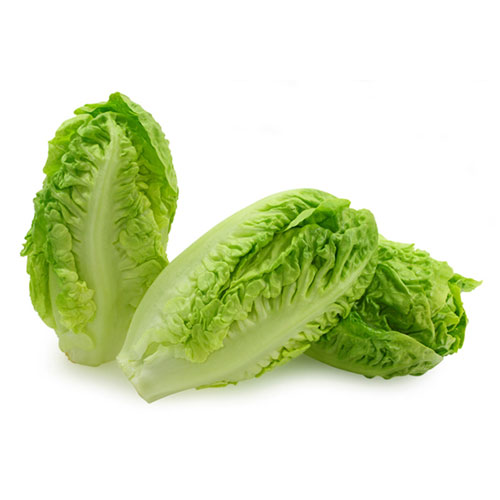 Lettuce – The Original Viagra?